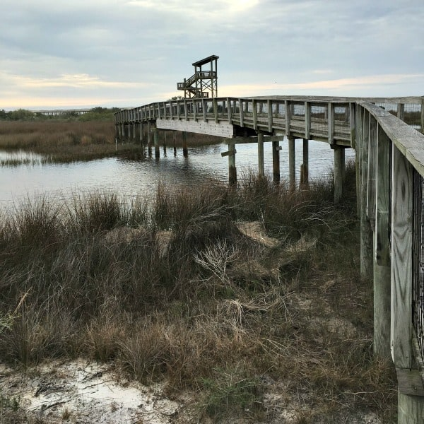 Big Lagoon State Park, Florida observation tower.