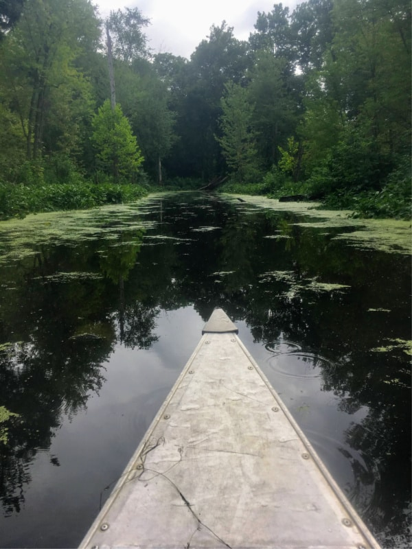 Canoeing down a waterway between lakes in Chain O' Lakes State Park, Indiana.