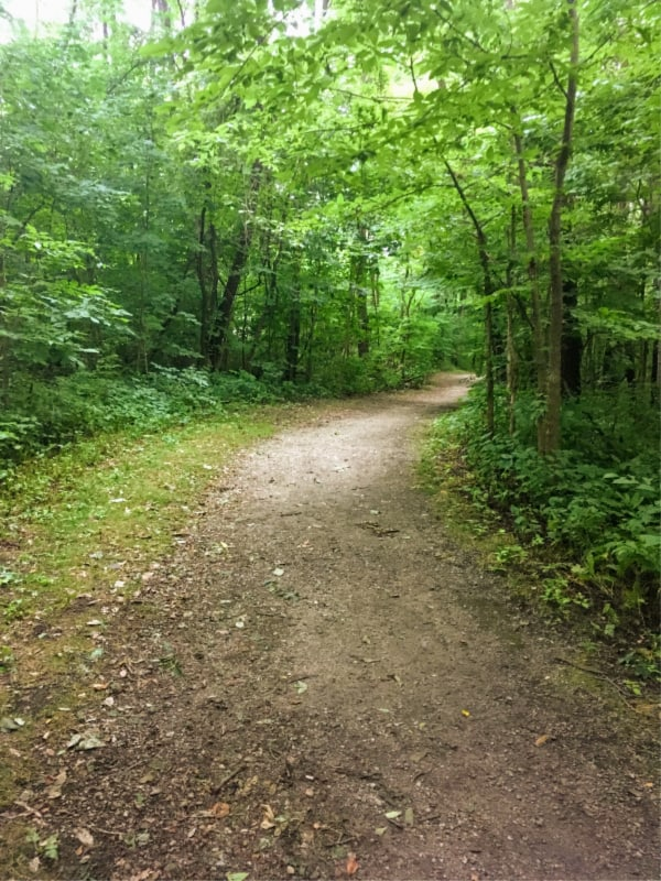 Hiking trail in Chain O' Lakes State Park, Indiana.