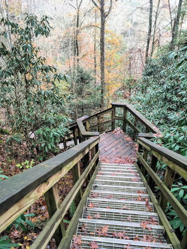 More stairs in Natural Bridge State Park
